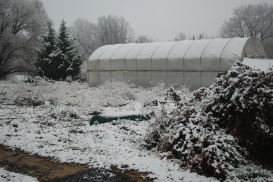 yes, this is my farm too, winter 2012